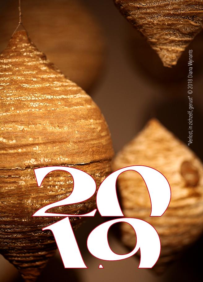 Nieuwjaar 2019-Enkel-1